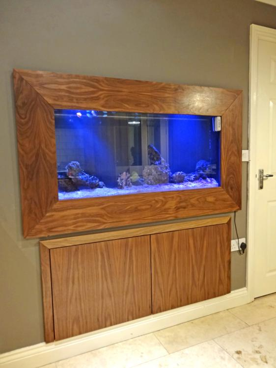 files/Gallery/projects/products-and-furniture/gallery_thumbs/Spy_Interiors_aquarium.jpg
